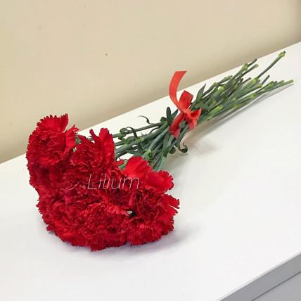 Красная гвоздика 19 шт