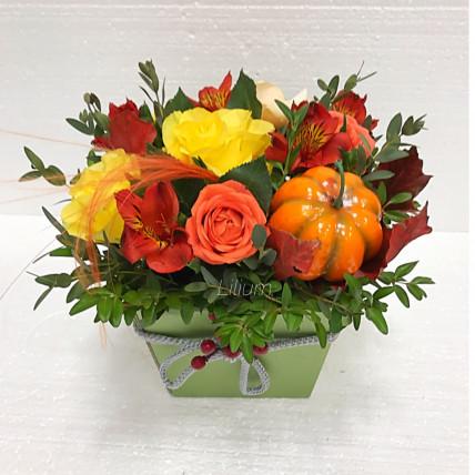 Коробка цветов с тыковкой