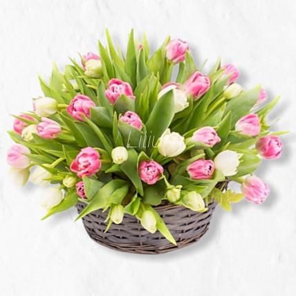 Корзина с 55 тюльпанами