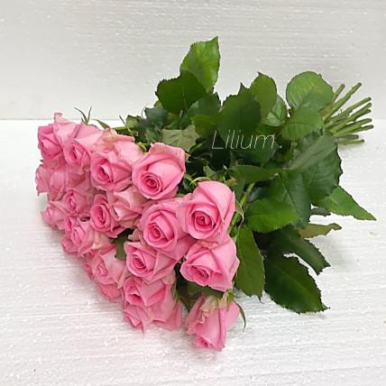 Розы розовые российские
