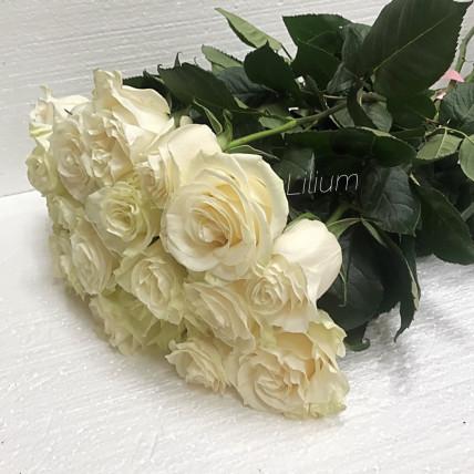 Розы белые эквадор