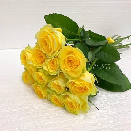 Розы жёлтые российские